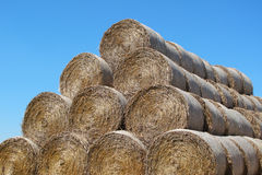 Hay pile under blue summer sky Stock Images