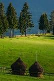 Hay piles on farmland Royalty Free Stock Image