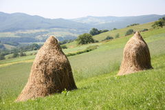 Hay piles on the mountains field Royalty Free Stock Photos