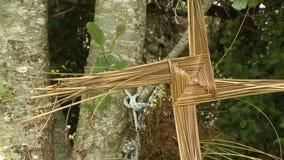 Hay pinwheel on tree stock video