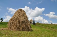 Hay preparation Stock Photography