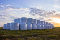Hay preparation, rolls, hay reel, straw, bale, on a meadow on the grass. sunset Stock Photo