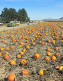 A Hay Ride Heads Out to a Pumpkin Patch Stock Image