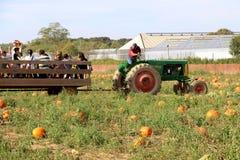 Hay ride in Long Island, NY royalty free stock photo