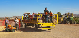 A Hay Ride Returns From a Pumpkin Patch Stock Photos