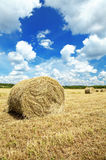 Hay roll Stock Images