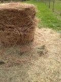 Hay Roll Photo stock