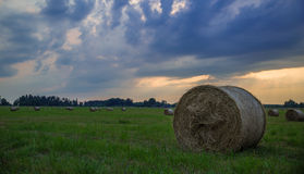 Hay Roll immagine stock
