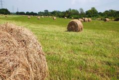 Hay Roll. This is a shot of a field of hay rolls shot in Ohio Stock Image