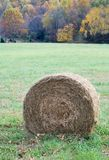Hay roll Royalty Free Stock Photos