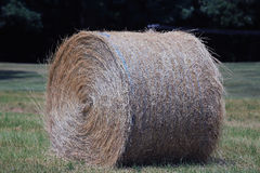 Hay Roll Images stock