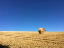 hay roll Стоковые Фото