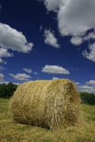 Hay roll (bale). In a field. forest in the background, dramatic blue skies with clouds stock photography