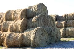 Hay roll bales on countryside field royalty free stock photography