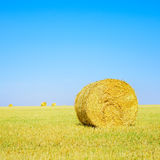 Hay roll, blue sky and yellow field. Tuscany Royalty Free Stock Images