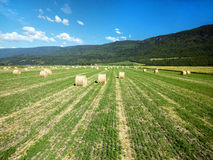 Hay roll on Canadian farms Stock Photo