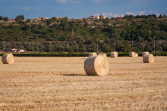 Hay roll in the country 2 Royalty Free Stock Photos