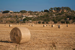 Hay roll in the country 9 Royalty Free Stock Photos