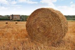 Hay Roll On Farm Immagini Stock