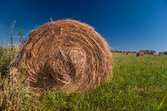 Hay roll Royalty Free Stock Images
