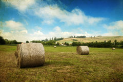 Hay-roll on field after harvest Royalty Free Stock Images