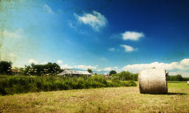 Hay-roll on field after harvest Royalty Free Stock Image
