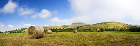 Hay-roll on field after harvest Royalty Free Stock Photos