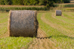 Hay roll on fields close up Royalty Free Stock Image