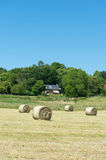 Hay roll in France Royalty Free Stock Image