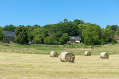 Hay roll in France Stock Photo