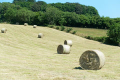 Hay roll in France Stock Photos