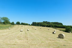 Hay roll in France Royalty Free Stock Images