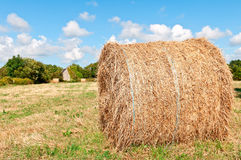Hay roll on meadow with blue sky Stock Photos