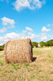 Hay roll on meadow with blue sky Stock Image