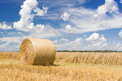 Hay roll on a meadow Royalty Free Stock Images
