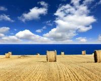 Hay roll on meadow near seashore Royalty Free Stock Image
