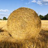 Hay roll on wheat field in late summer Royalty Free Stock Image