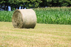 Hay roller Royalty Free Stock Photography