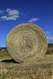 Hay Rolls Fotos de Stock Royalty Free