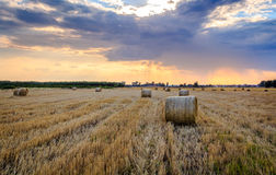 Hay rolls and beautiful sky. Hay rolls during sunset. Dramatic sky, harvest time Stock Photography