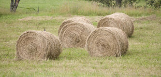 Hay rolls in a farmers pasture Stock Images