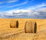 Hay rolls on farming field under nice clouds in sky Royalty Free Stock Photos