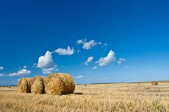 Hay rolls on the field Royalty Free Stock Photos