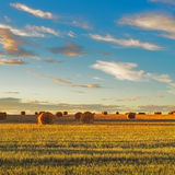 Hay rolls and harvested field at sunset. Tuscany Stock Photo