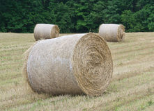Hay Rolls in Huntingtown, Maryland. Hay rolls waiting to be picked up from a field in Huntingtown, Maryland stock images