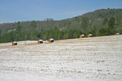 Hay Rolls In The Snow Stock Photography