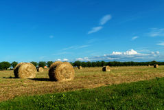 Hay rolls in the Italian countryside Stock Photography