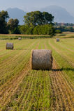 Hay rolls and mountains landscape Stock Image