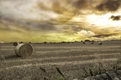 Hay rolls in an open field with dramatic sky. royalty free stock photos
