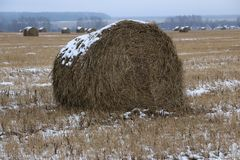 Hay rolls in the snow on a plowed field. Big hay rolls in the snow on a snow-covered empty plowed field Stock Images